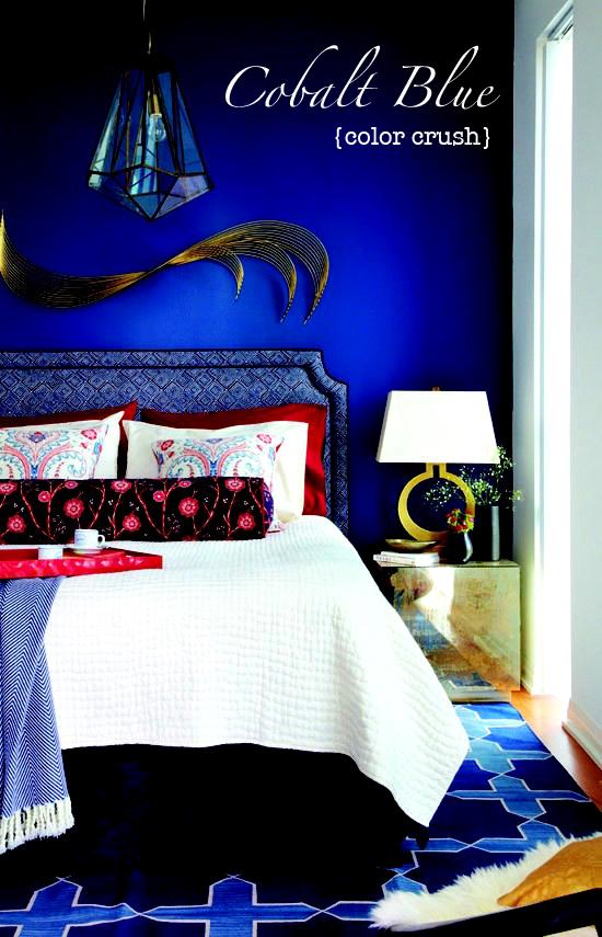Cobalt Blue Fashion & Home Décor